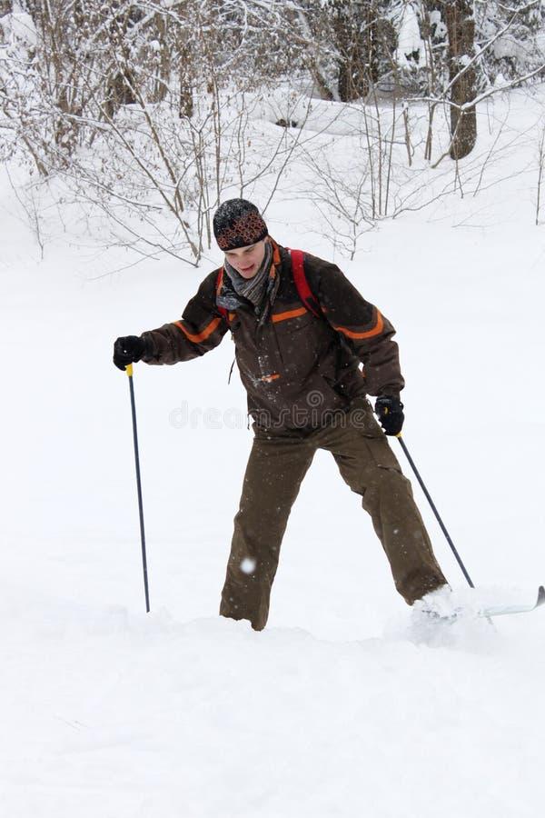 kraju przecinająca dilettante narciarka obraz stock