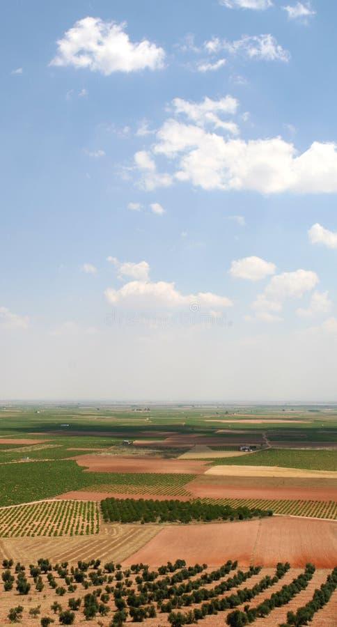 Download Kraju wykładowcy quijote zdjęcie stock. Obraz złożonej z horyzont - 13332328
