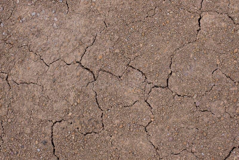 Krakingowa aridity ziemi ziemia krótko po deszczem abstrakcyjny tło zdjęcie royalty free