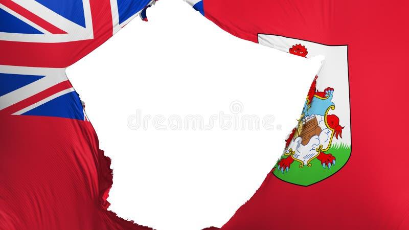 Krakingowa Bermuda flaga ilustracji