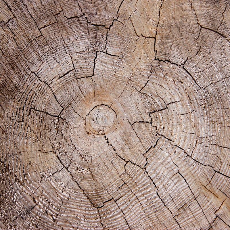 Krakingowa drewniana tekstura zdjęcia stock
