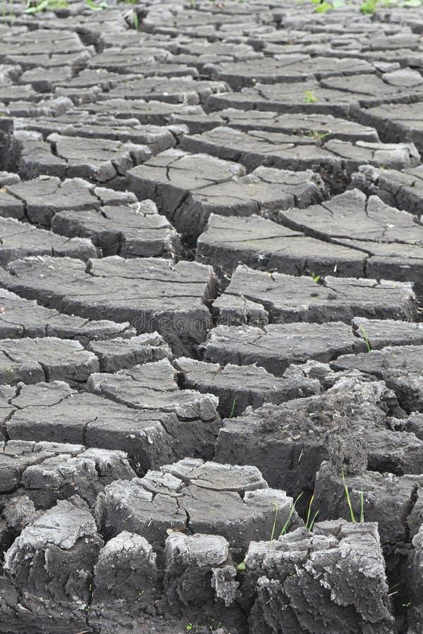 Krakingowa ziemia erozją zdjęcie stock