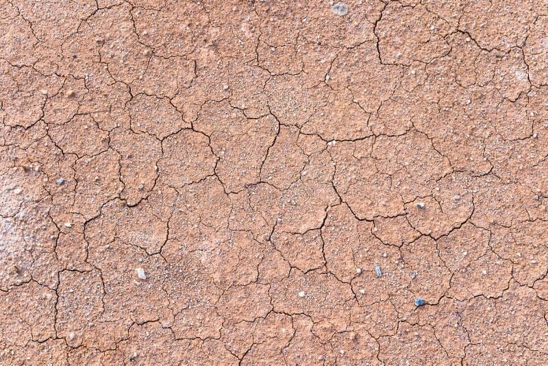 Krakingowa ziemia, Glebowa tekstura, Blaknąć, Silne rewolucjonistki, kolor żółty ziemia z małym otoczakiem obrazy stock