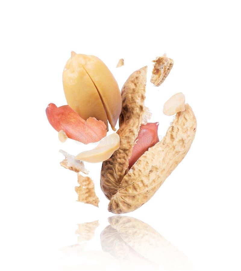Krakingowi arachidy w górę odosobnionego na białym tle obrazy stock
