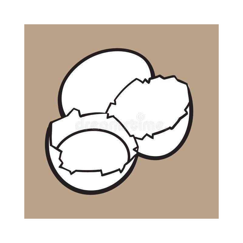 Krakingowy, łamający i rozlewający kurczaka jajko, nakreślenie stylowa wektorowa ilustracja royalty ilustracja