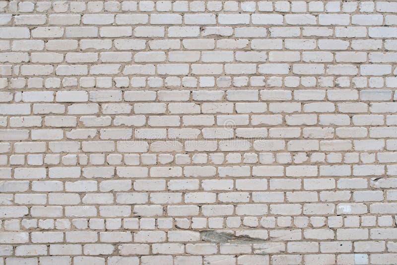 Krakingowy biały grunge ściana z cegieł textured obraz royalty free
