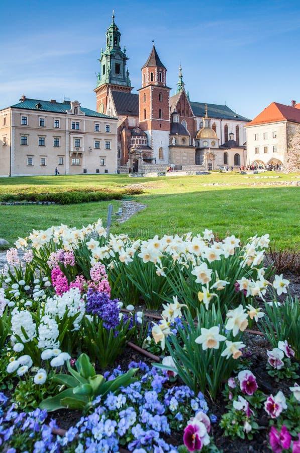 krakow Польша Королевский замок Wawel стоковые фотографии rf