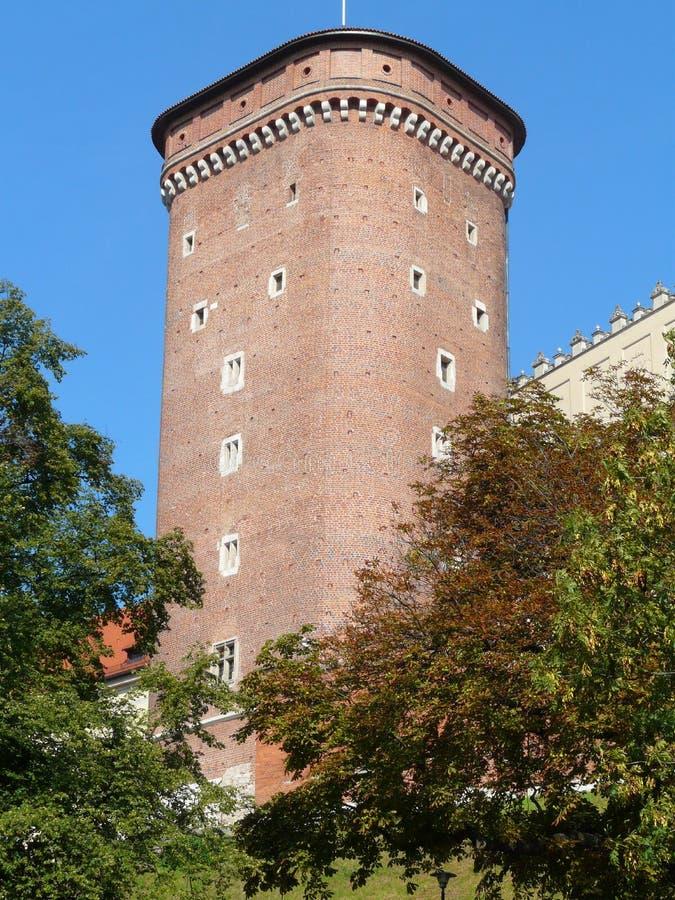 KRAKOW, królewski kasztel w Krakow Wawel zdjęcia royalty free