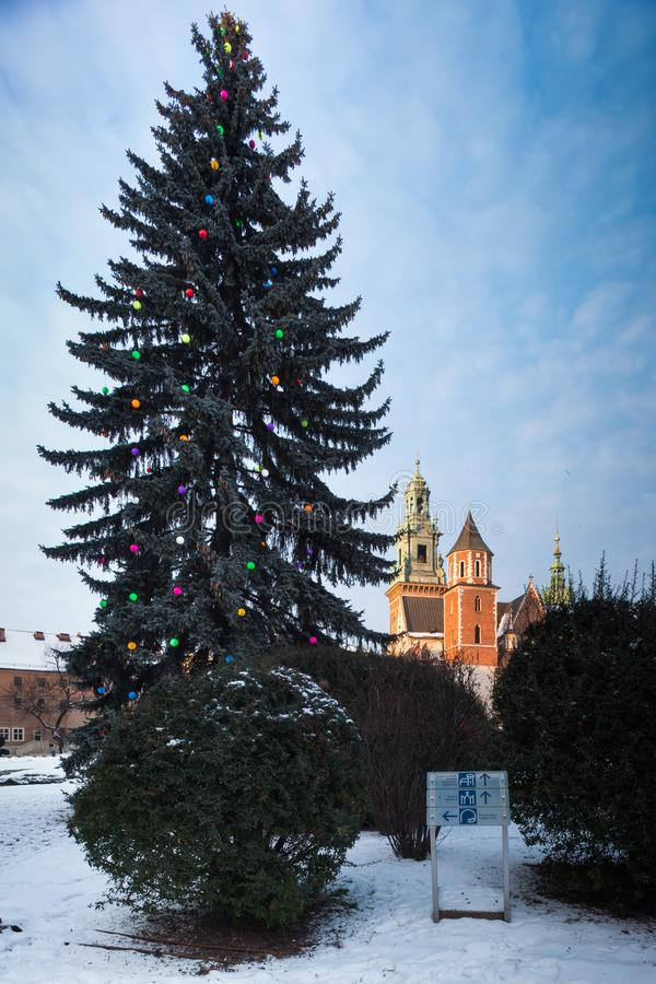 Krakow, Poland. Wawel Castle and christmas tree. Krakow, Poland. January 07, 2019. Wawel Castle in winter. Christmas tree on foreplan royalty free stock photos