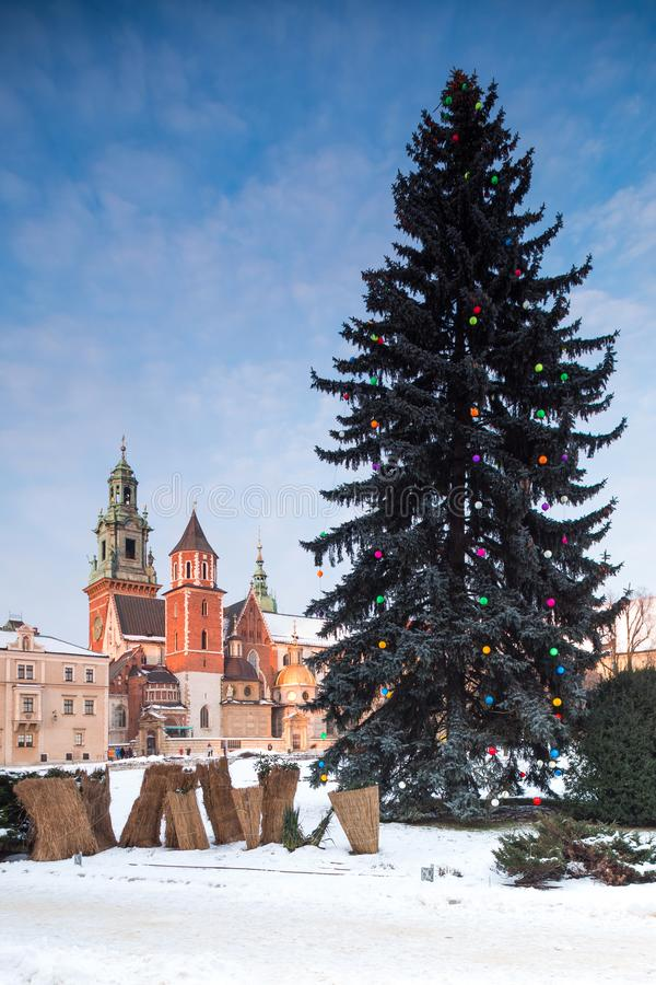 Krakow, Wawel, Poland. Big christmas tree. Krakow, Poland. January 07, 2019. Wawel Castle in winter. Christmas tree on foreplan stock photos