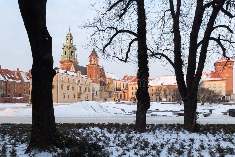 krakow Poland Wawel kasztele widzieć drzewa fotografia royalty free