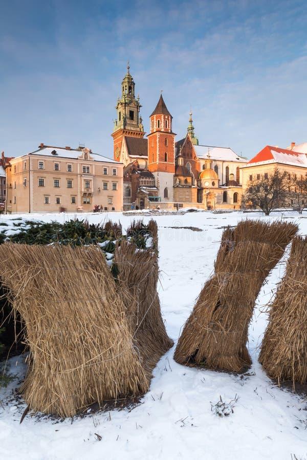 krakow Poland Wawel siana i kasztelu bele obrazy royalty free