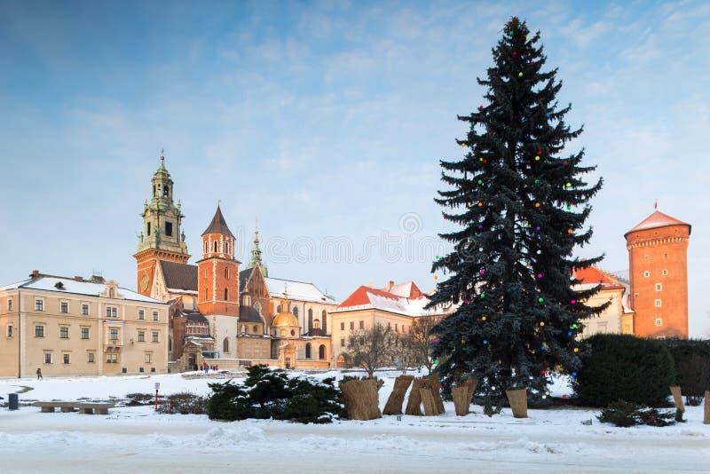 Krakow, Wawel, Poland. Christmas tree. Krakow, Poland. January 07, 2019. Wawel Castle in winter. Christmas tree on foreplan stock photos