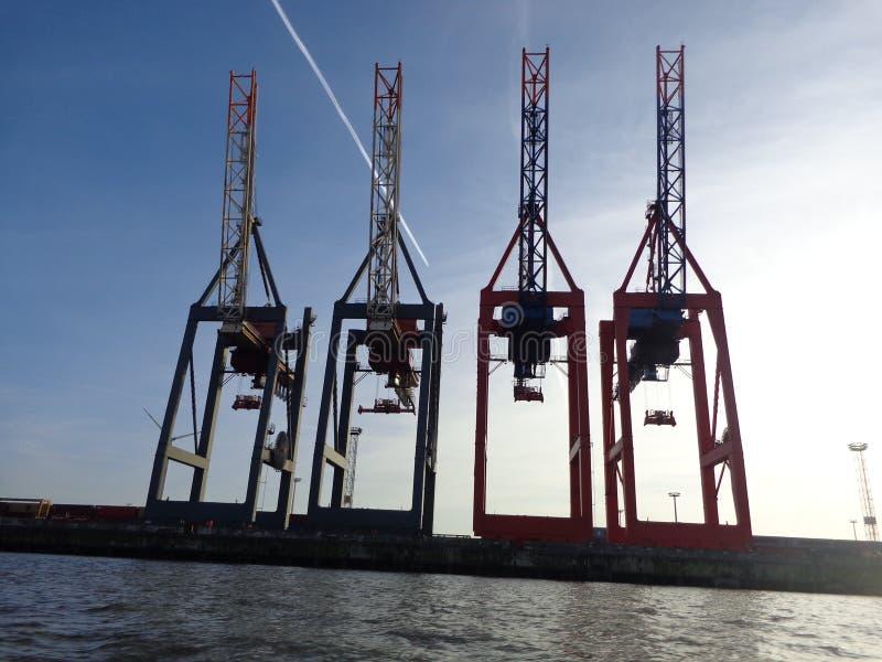 Kranar på hamnen arkivbild