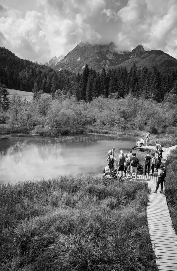 Kranjska Gora Slovenia, Czerwiec, - 13, 2018: szkolna wycieczka sceniczny miejsca przeznaczenia zelenci - rzeczny dolinki źródło  obraz royalty free