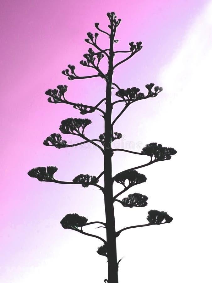 Krankhafter Baum lizenzfreies stockfoto