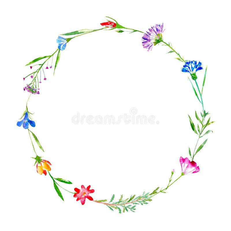 Krans av en blåklint, blåklocka, örter, tansy, blom- ljung royaltyfri illustrationer