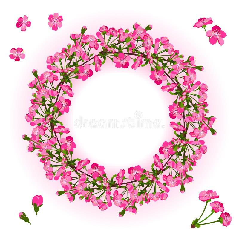 Krans av filialen för körsbärsröd blomning vektor illustrationer