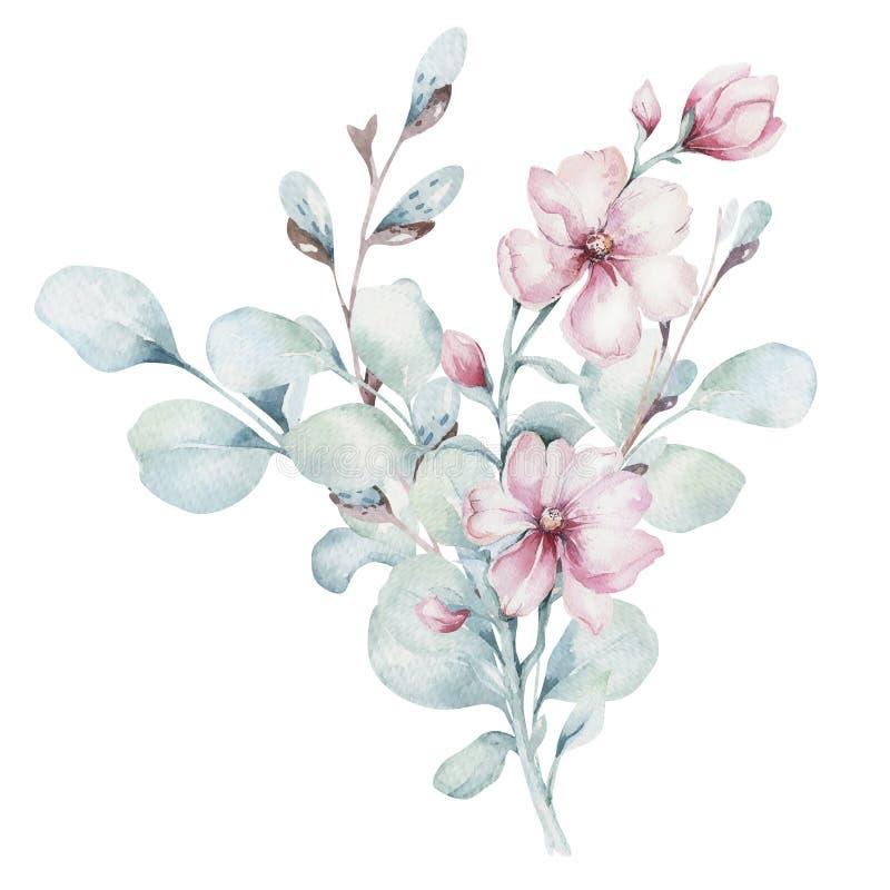 Krans av rosa körsbärsröda blommor för blomning i vattenfärgstil med vit bakgrund Ställ in av sommar som blommar japanska sakura vektor illustrationer
