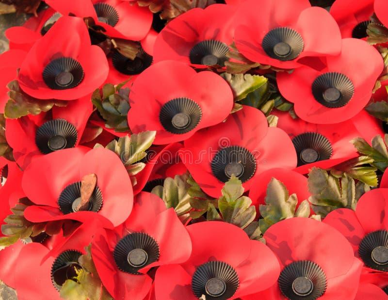Krans av vallmo som firar minnet av det första världskriget arkivbild