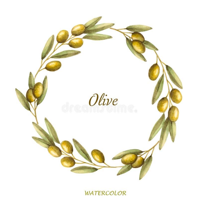 Krans för olivgrön filial för vattenfärg vektor illustrationer