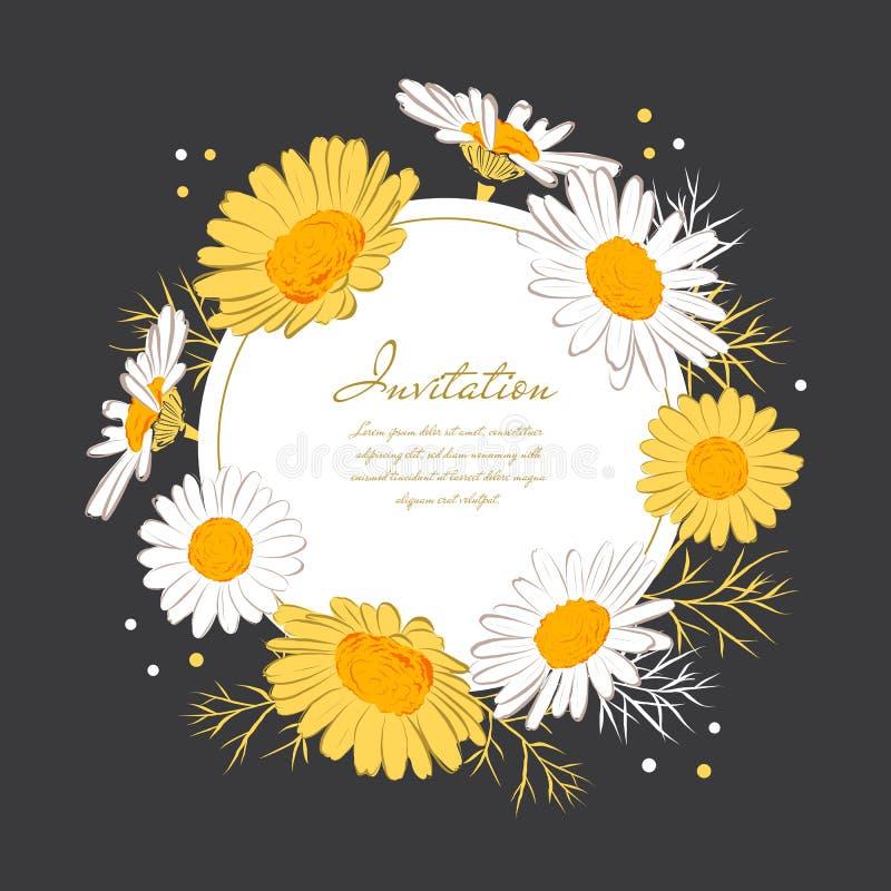 Krans för tusensköna för bakgrund för blommakortkamomill Blomma tusenskönor på a på en mörk bakgrund Elegant blom- kort med royaltyfri illustrationer