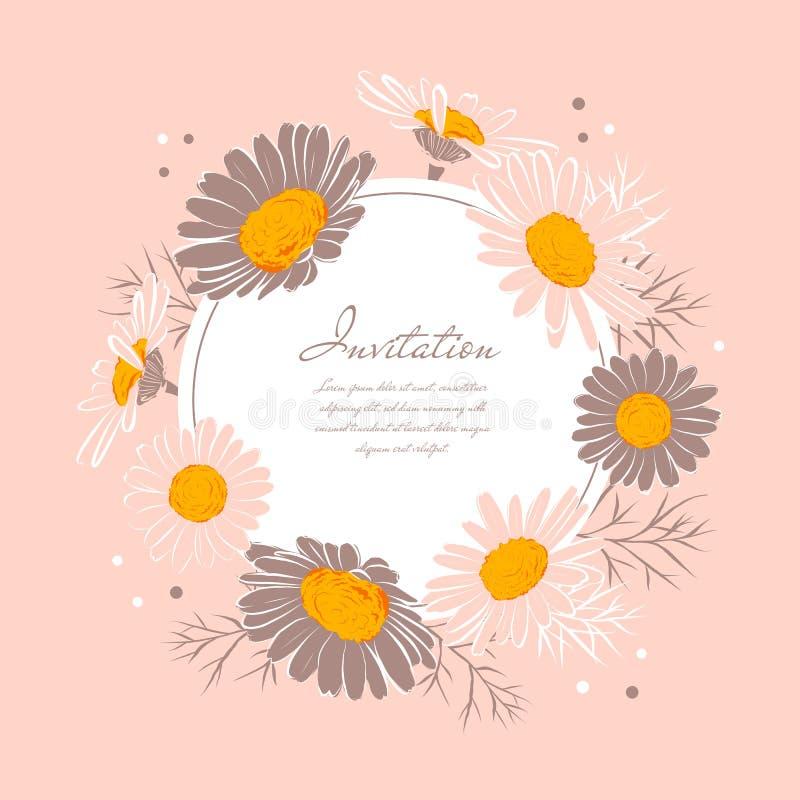 Krans för tusensköna för bakgrund för kamomill för blommabröllopinbjudan Elegant blom- kort med textutrymme ocks? vektor f?r core royaltyfri illustrationer