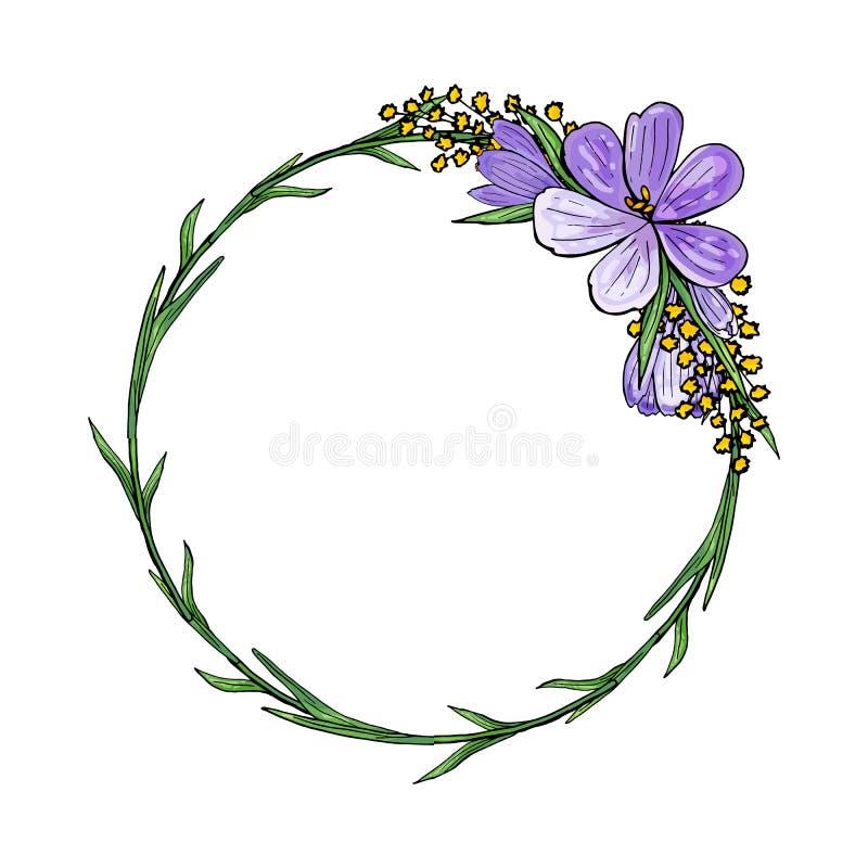 Krans med krokusar och mimosan stock illustrationer