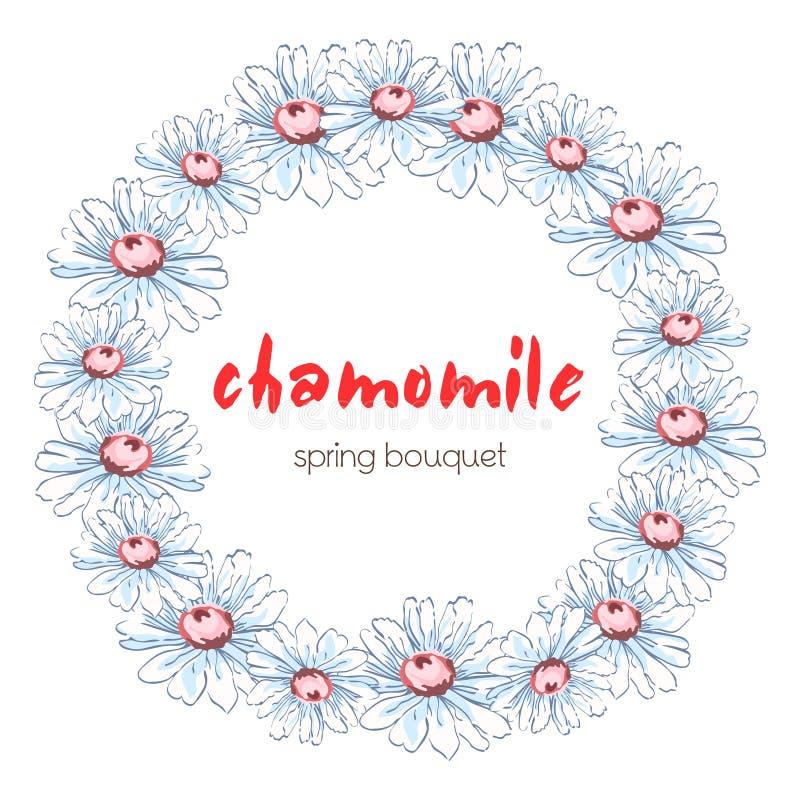 Kransen av kamomillen blommar, blom- bakgrund för vektorn, rundablommaramen, gräns Vita kamomillblommor för utdragna knoppar vektor illustrationer