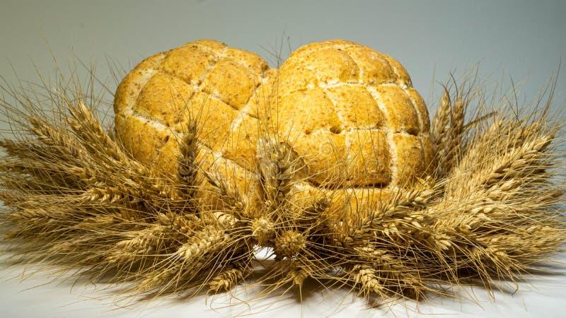 Kransen göras av veteöron i den nytt bakat bröd två, med deras egna händer, guld- öron av armar, en serie av bakgrund royaltyfria bilder