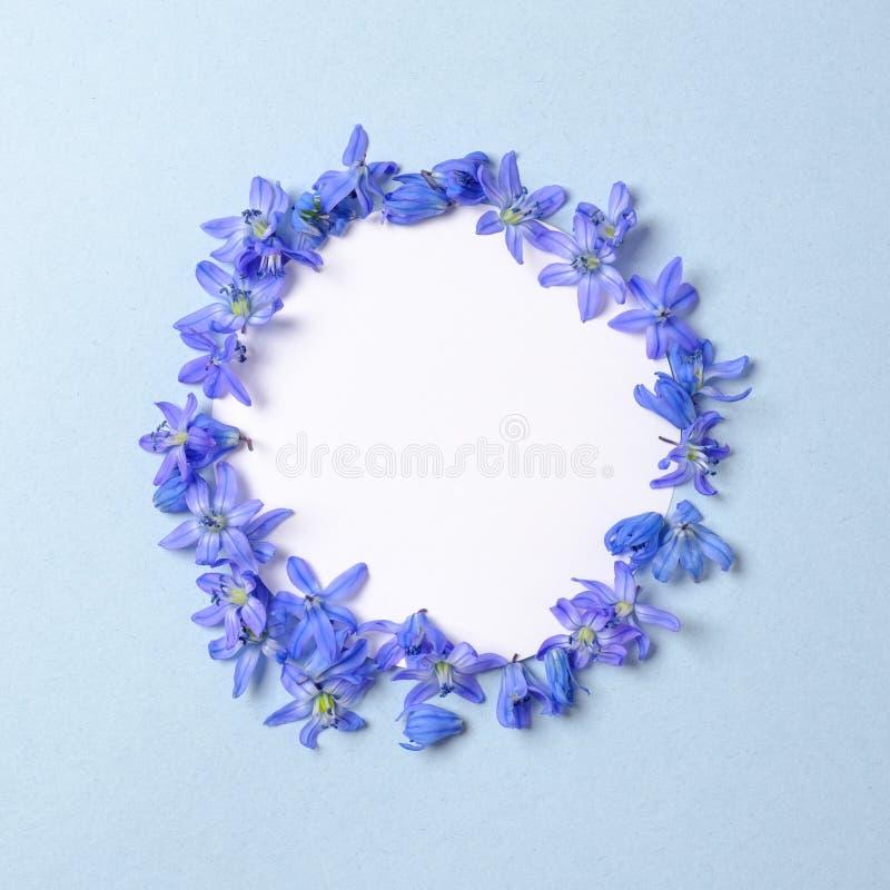Kranz gemacht von den blauen Blumenblumenbl?ttern mit freiem Raum innerhalb des Kreises auf blauem Pastellhintergrund Flache Lage lizenzfreie stockbilder