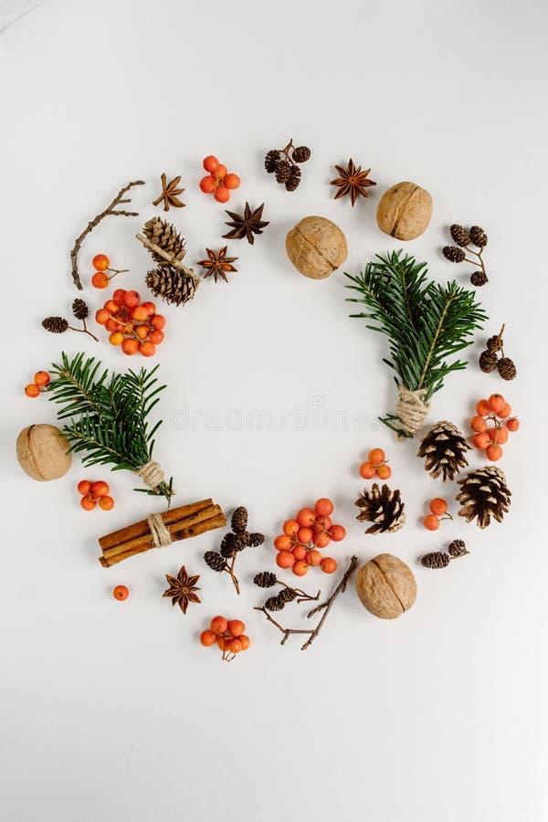 Kranz gemacht von den Weihnachtsbaumasten, Stöße, rote Beeren und auf weißem Hintergrund stockfotografie