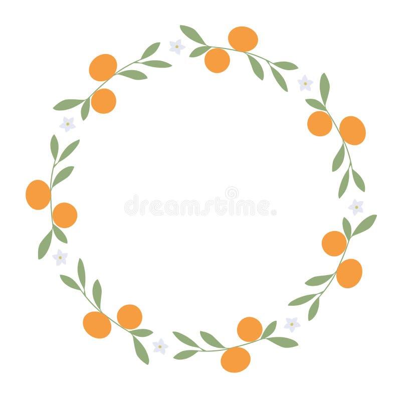 Kranz von Blättern, von Orangen und von orange Blüten auf weißem Hintergrund stock abbildung