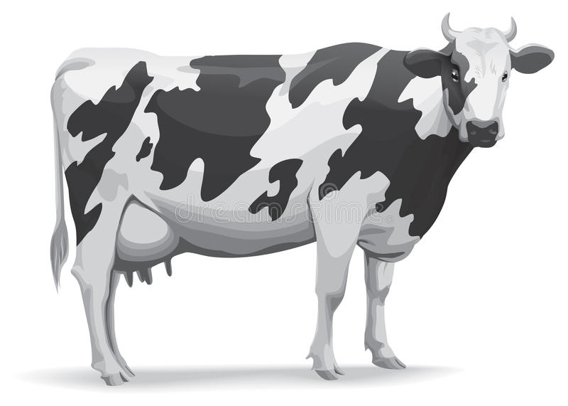 Kras vector illustratie