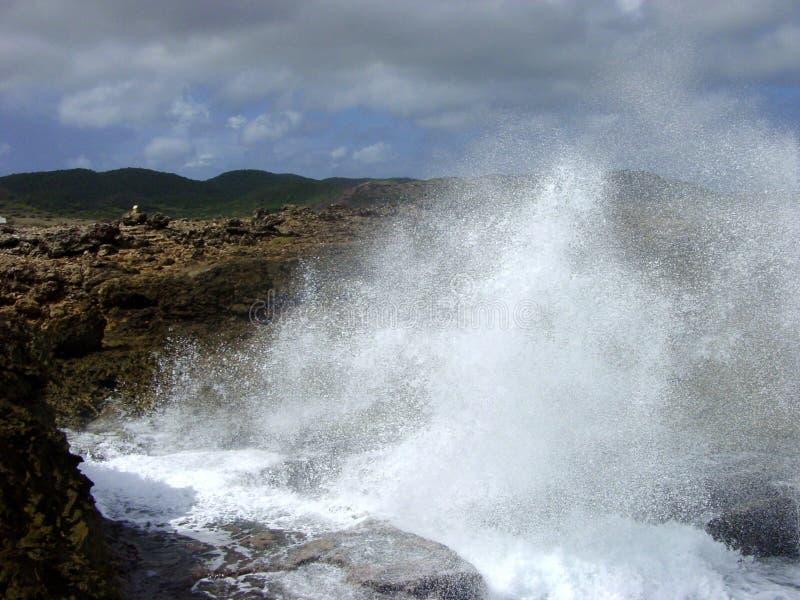 krascha wave arkivfoto