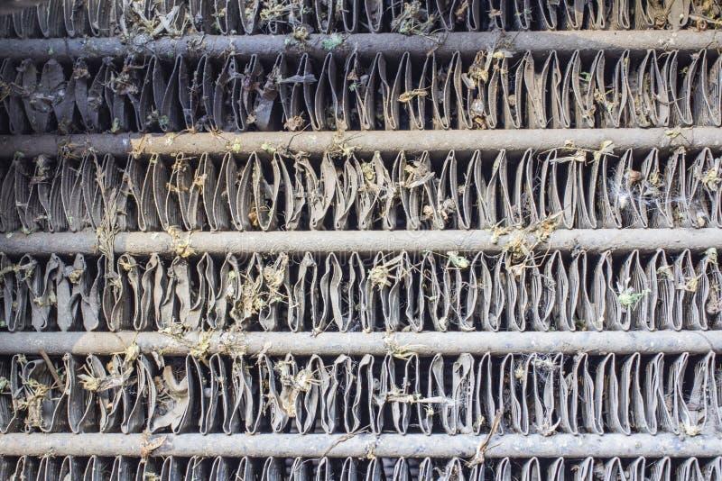 Kraschat kryp på det bilstötdämparen och elementet Krossa myggorna och knott på framdelen av medlet royaltyfria foton