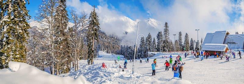 KRASNAYA POLYANA, SOCHI, RUSSLAND - 31. JANUAR 2016: Panorama des Skifahrenlauf- und Spitzenaufzug ` Schutz-Tanne ` ` Laura, GAZP stockfotos
