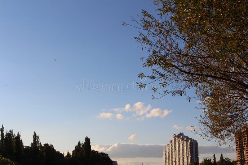 krasnodar στοκ εικόνα