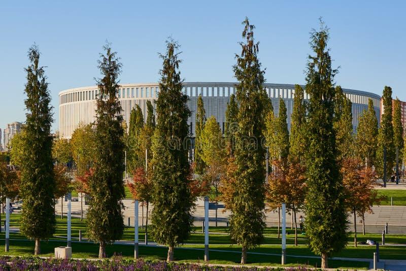 Krasnodar, Rússia - 7 de outubro de 2018: Fileiras delgadas de sempre-verde e de árvores de folhas mortas no passeio no parque de foto de stock royalty free