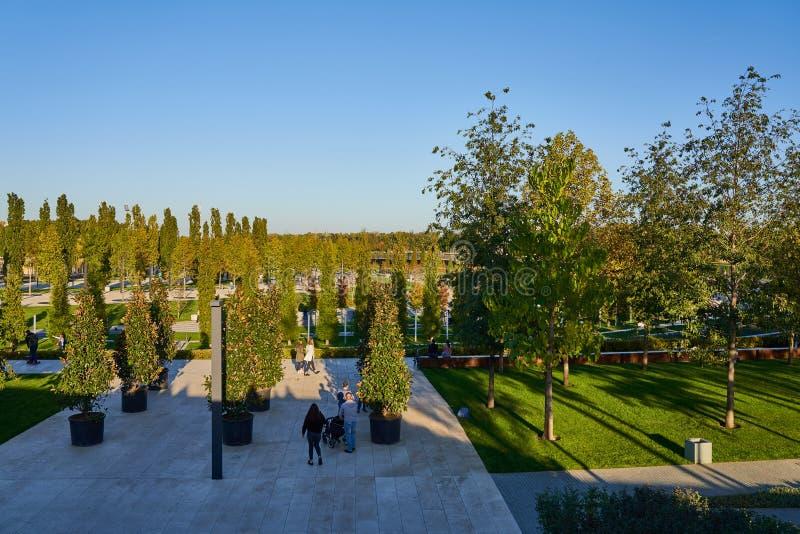 Krasnodar, Rusia - 7 de octubre de 2018: Árbol de hoja perenne y árboles de hojas caducas en los callejones que caminan en el par imagenes de archivo