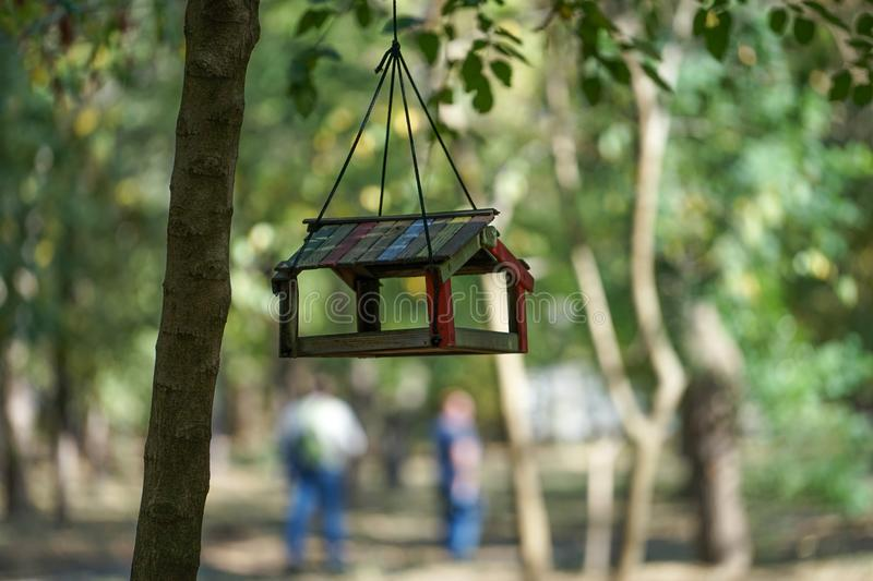 Bird feeder hanging in the autumn Park among the trees on blurred background in warm autumn day. Krasnodar, Russia. October 8, 2017. Bird feeder hanging in the stock photography