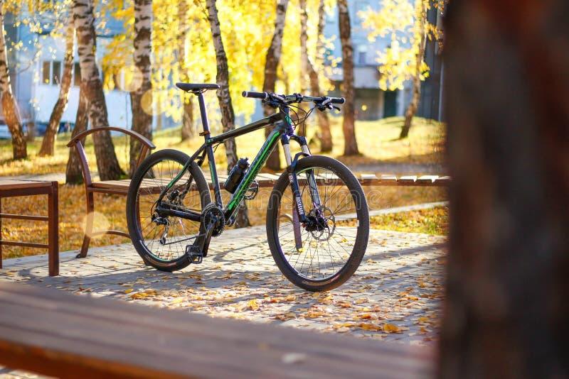 KRASNOYARSK, RÚSSIA - 7 DE OUTUBRO DE 2018: Montanha que Biking na floresta do outono fotografia de stock royalty free