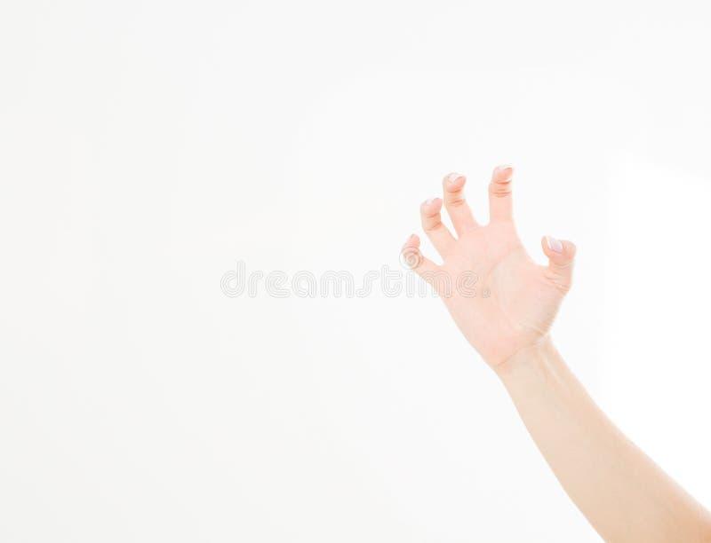 Krassende die hand op witte achtergrond wordt geïsoleerd De ruimte van het exemplaar stock afbeeldingen
