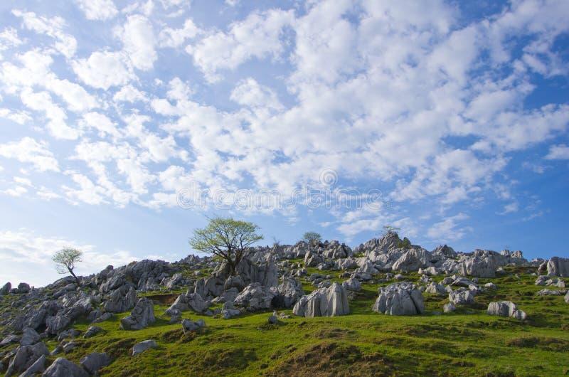 Krasu terenoznawstwo (Shikoku kras) zdjęcie royalty free