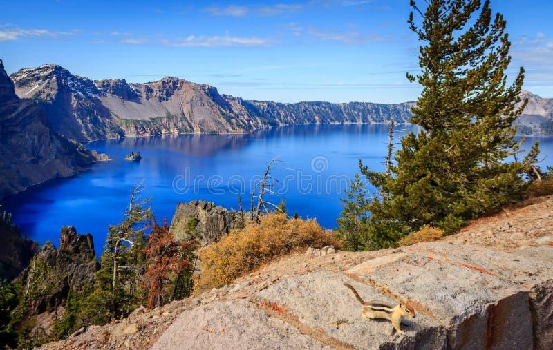 Krater sjöekorre royaltyfri bild