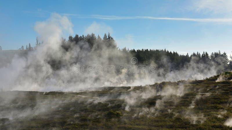 Kratery księżyc geotermiczny krajobraz w Nowa Zelandia zdjęcia stock