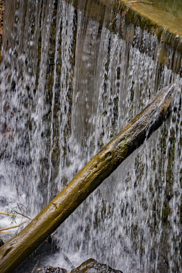 Krattar maler dammfördämningen royaltyfri bild