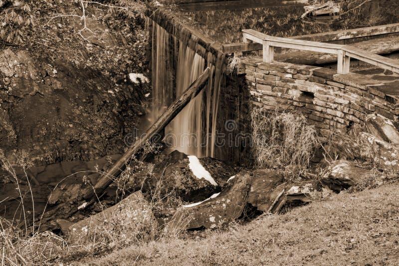 Krattar maler dammfördämningen förbiser arkivbild