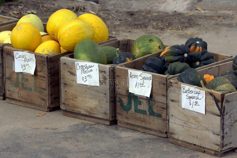 Kratten van Pompoen en meloenen stock afbeeldingen