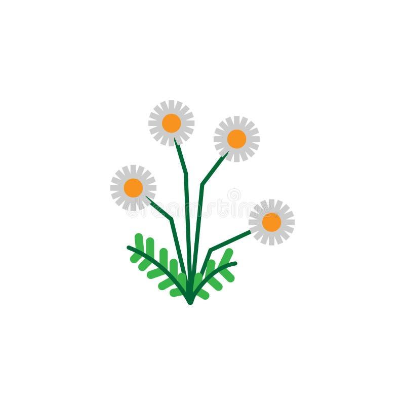 Kraut, Kamillenikone Element der Krautikone für mobile Konzept und Netz Apps Ausführliches Kraut, Kamillenikone kann für Netz ben lizenzfreie abbildung